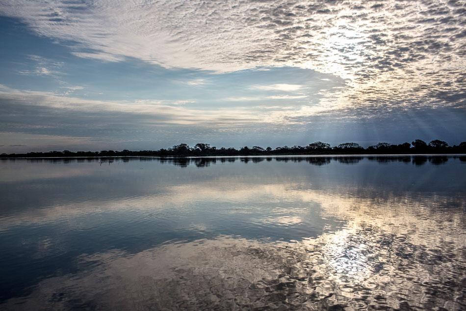 ensaio-fotografico-no-pantanal-ana-e-tiago-29